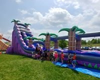 PURPLE WATER SLIDE